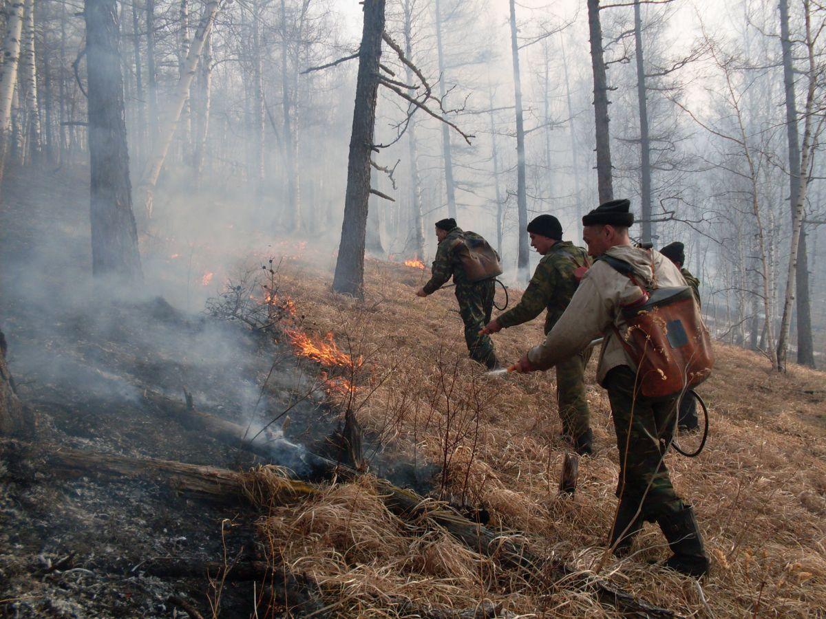 Хакасия готовится встретить весенние лесные пожары во всеоружии